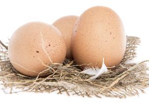 Zatrute jajka w Europie - czym są skażone? Jak uniknąć zatrucia skażonymi jajami?