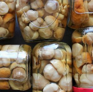 Grzyby marynowane w zalewie słodko-kwaśnej: przepis na łagodną marynatę octową